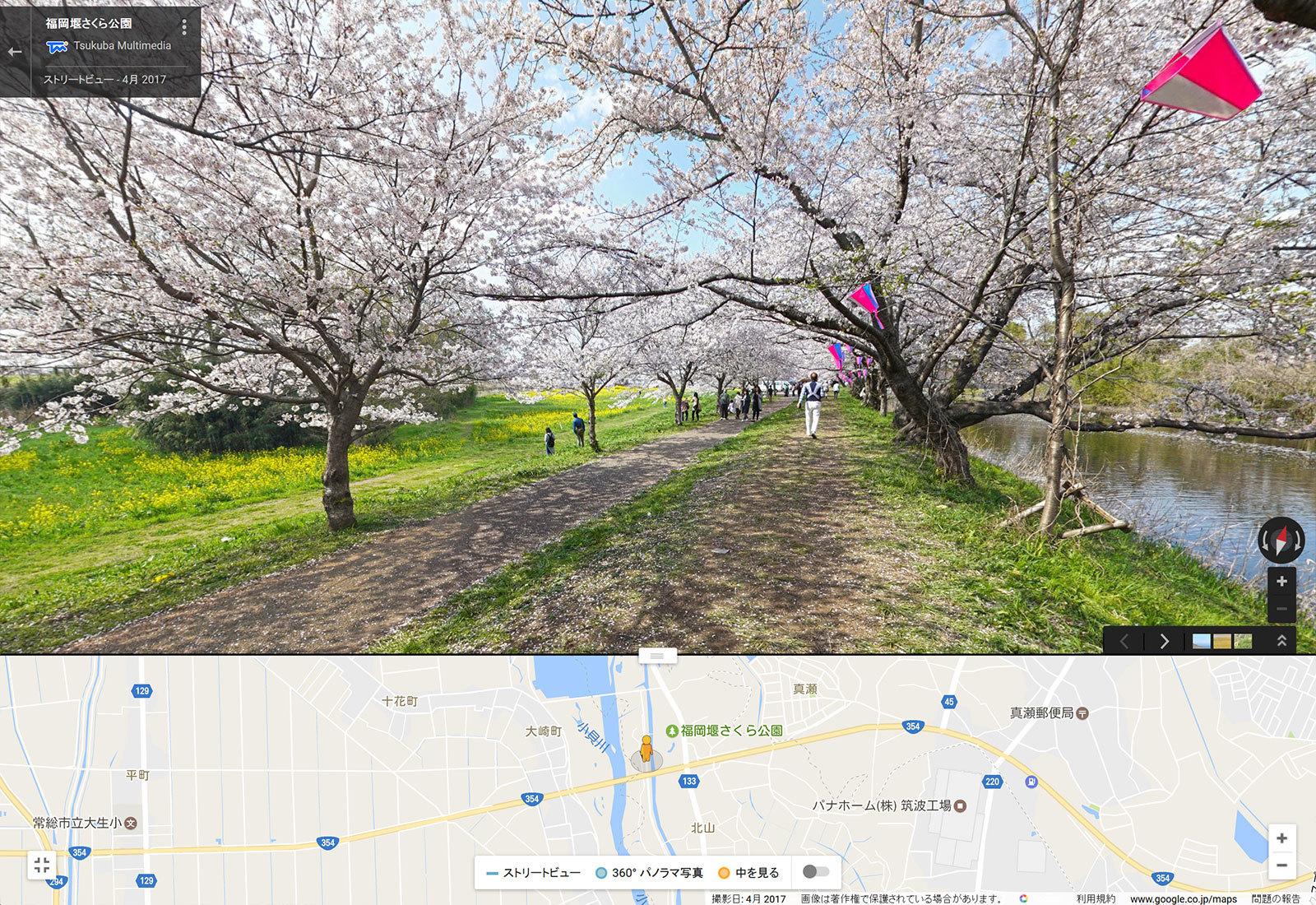 ストリートビュー写真(福岡堰桜)